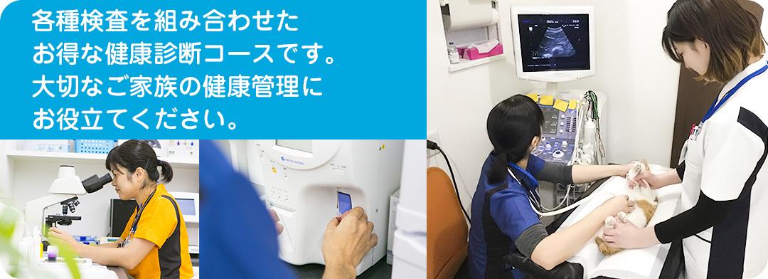 各種検査を組み合わせたお得な健康診断コースです。大切なご家族の健康管理にお役立てください。